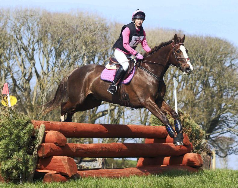 IRISH HORSE WORLD FIXTURES, APRIL 13th 2019