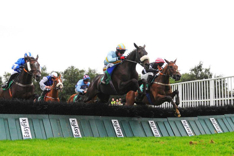 BRITISH POINT-TO-POINT SCENE: TB name attracts attention