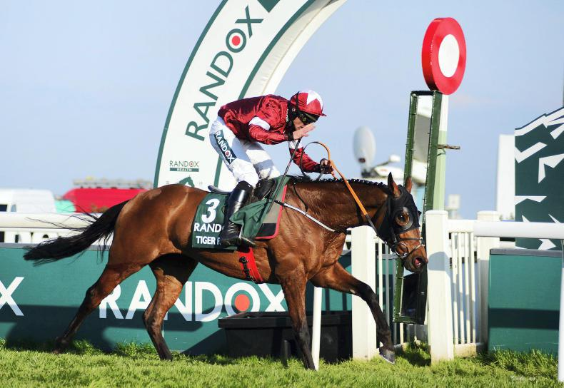 GRAND NATIONAL: Tiger rolls again to earn household acclaim