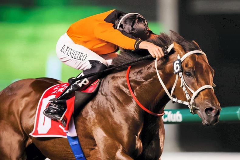 INTERNATIONAL RACING: UAE season almost at an end