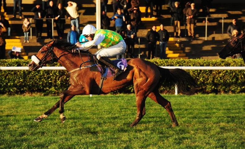 TRAMORE SUNDAY: Owenacurra Lass capable of a maiden success