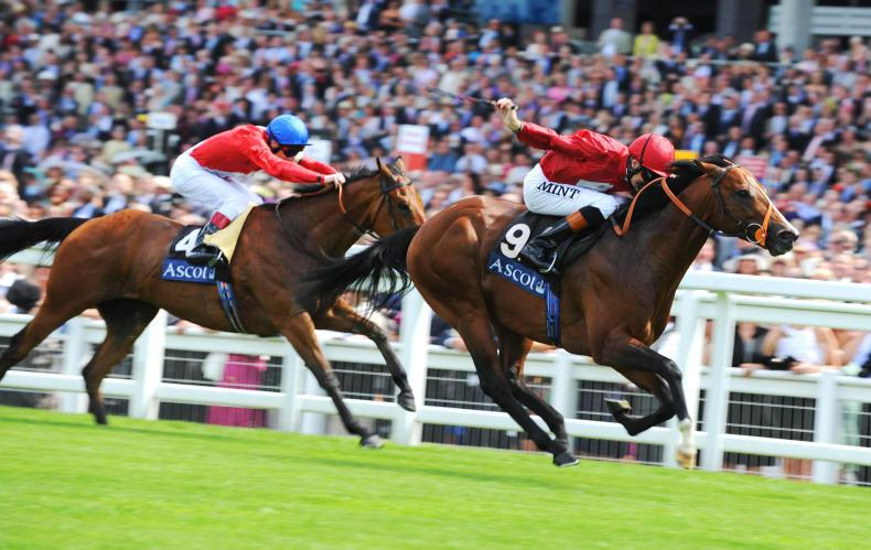 SALES: Find your Royal Ascot winner at Doncaster