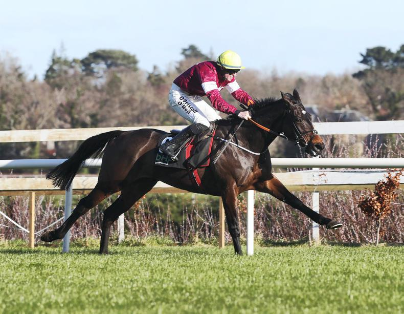Jade set for Punchestown