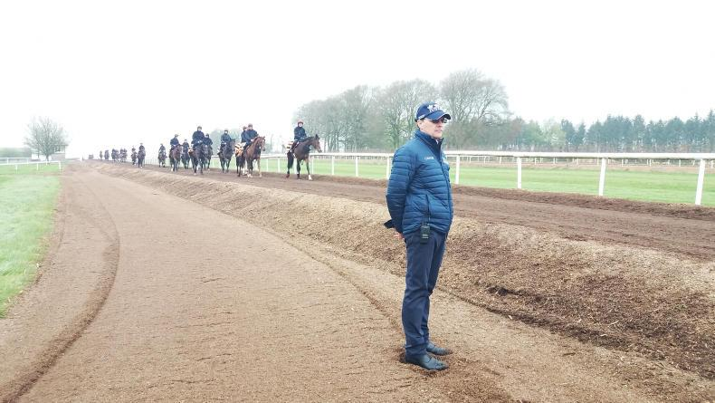TALKING TRAINER: Ballydoyle dreams alive and well