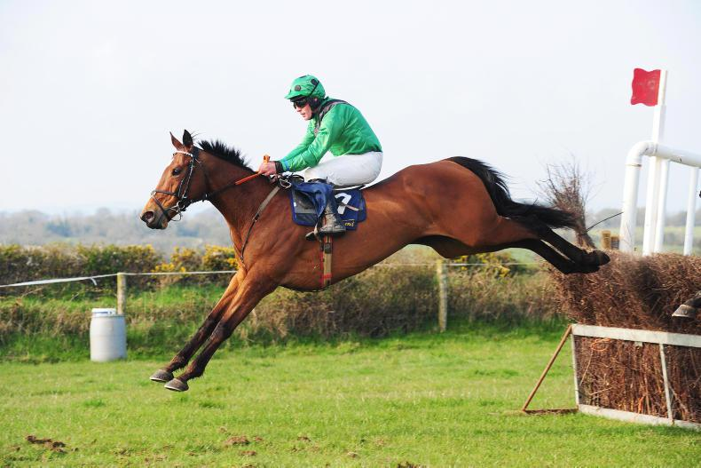 ISLAND FOXHOUNDS COURTOWN SUNDAY: Sadhbh finds winning Delight