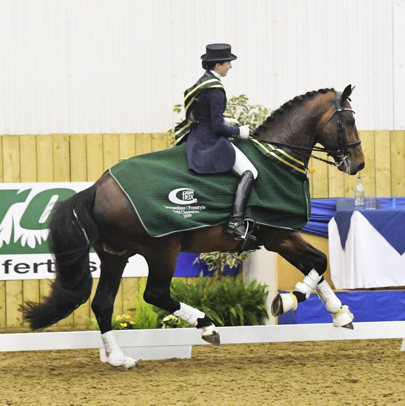 DRESSAGE:  NAF five-star Winter Dressage Championships a huge hit