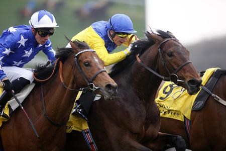 Mighty Marmelo powers home at Newbury