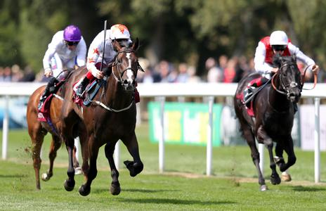 Advertise pleases Meade in HQ gallop
