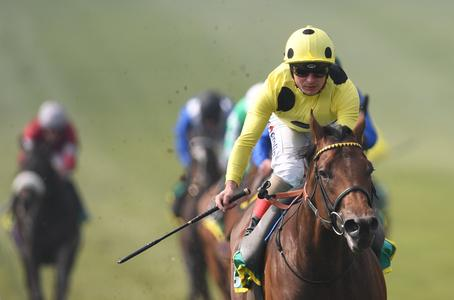 UAE Jewel makes sparkling debut in Wood Ditton
