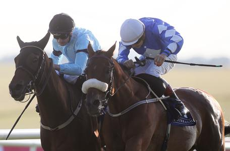 Ebor in sights again for Sea The Lion