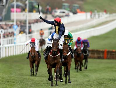 City Island all set for Punchestown