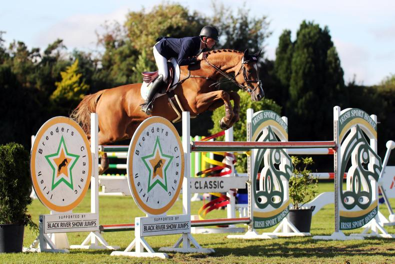 INTERNATIONAL: Three young horse wins for Ryan
