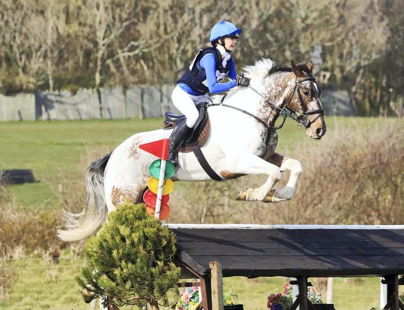 EVENTING: Victories for Johnston and Roden