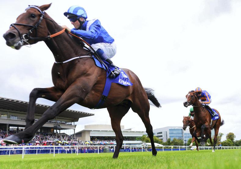 DONN McCLEAN: No clear picture for the 2000 Guineas