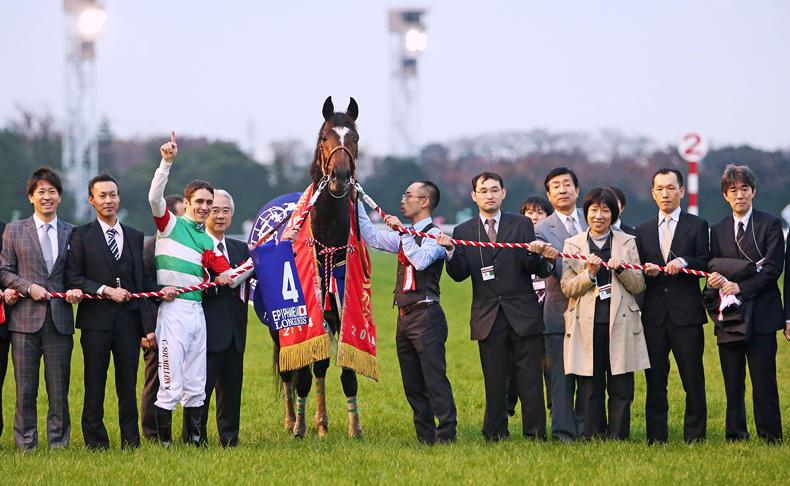 BREEDING INSIGHTS: Third Group 1 winner for Japan's Cesario