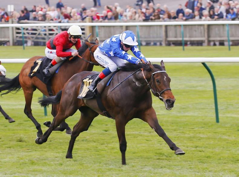 BRITAIN: Qabala shows quality in Nell Gwyn