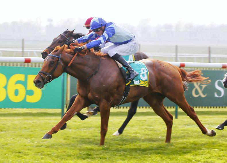 SIMON ROWLANDS: Skardu worth following after Craven win