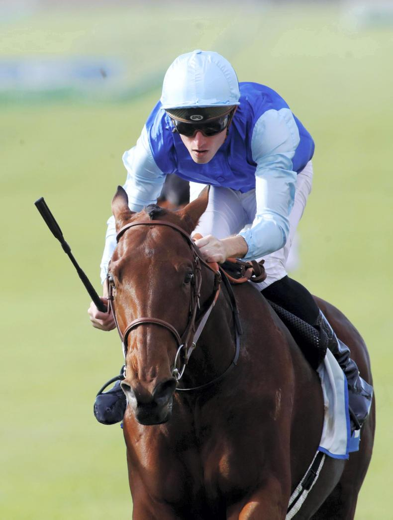 SIMON ROWLANDS: King can be big player at Newmarket