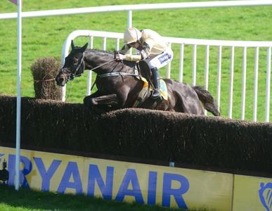 Voix Du Reve lifts Ryanair Gold for Mullins and Walsh