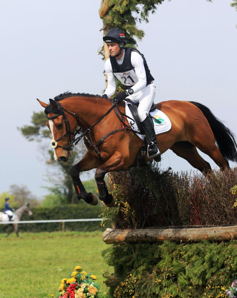 EVENTING:  Derroon Diplomat scores for Murphy