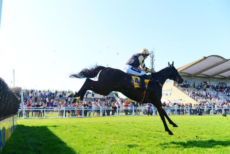 FAIRYHOUSE SUNDAY: Better fortune for Wylies with Voix Du Reve