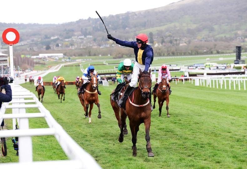 City Island thriving en route to Punchestown