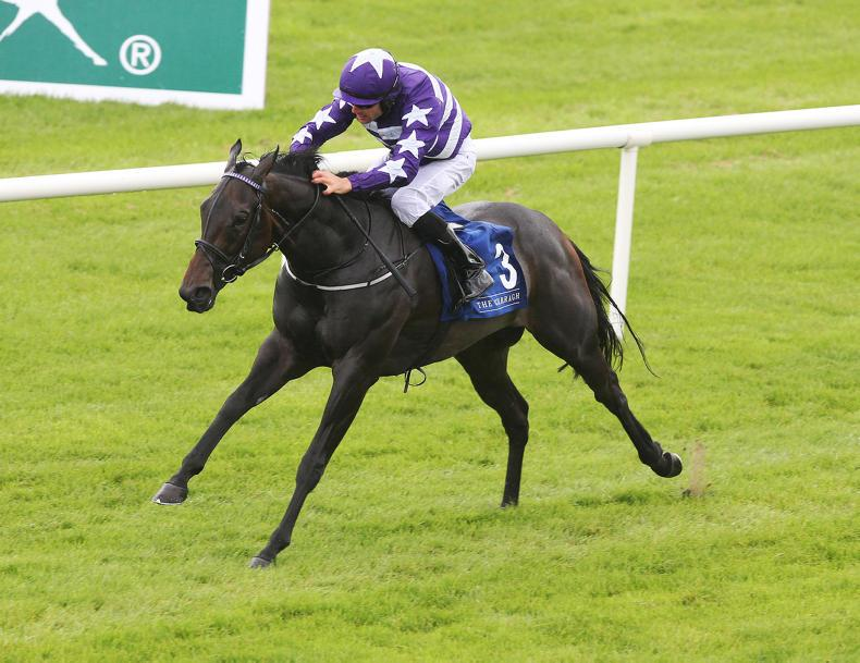 NEWS: Guineas hopes high for Lady Kaya