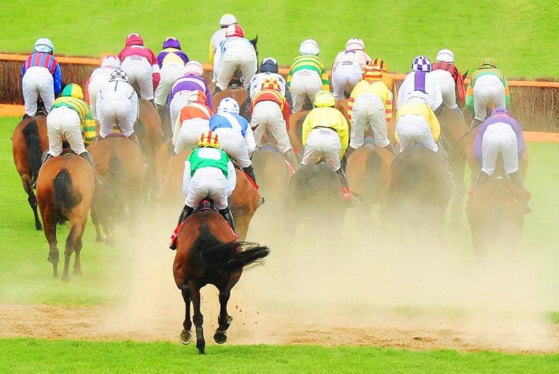 NEWS: Punchestown announce track development plans
