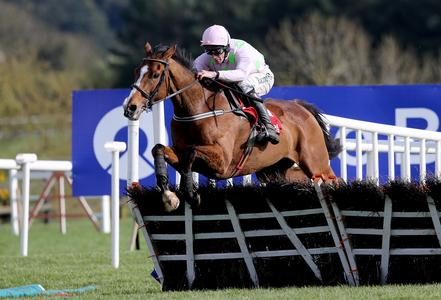 Faugheen to miss Punchestown and head for summer break