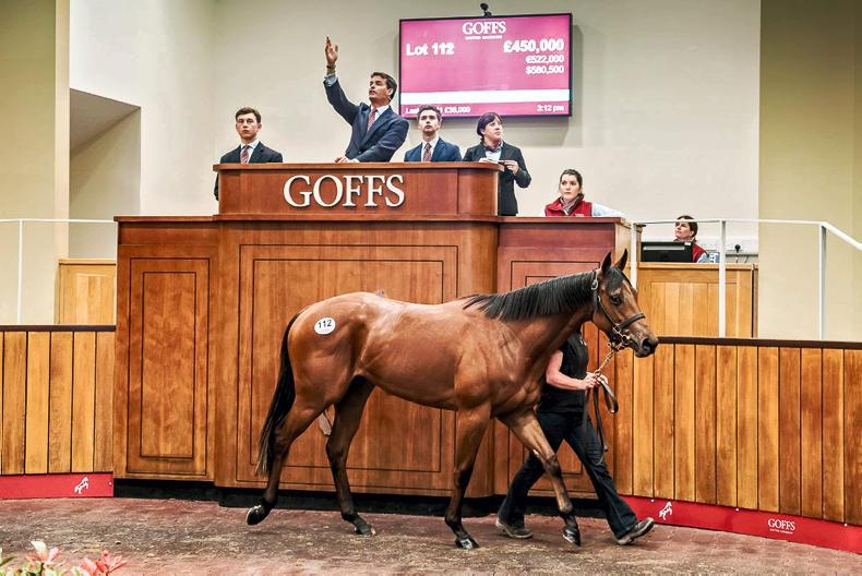 SALES: Record-breaking Siyouni filly tops Doncaster Breeze-Up Sale at £450,000