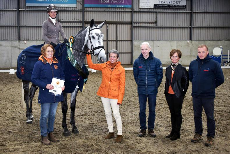 STEPPING STONES: Greenhall Granuaile delights winning connections