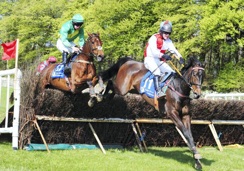 WATERFORD FOXHOUNDS: CURRAGHMORE SUNDAY: Decisive victory for Writteninthesand