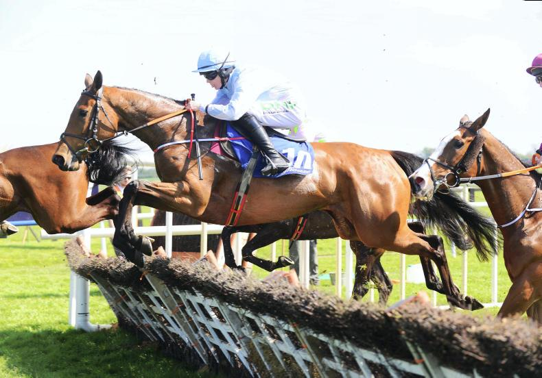 FAIRYHOUSE SUNDAY: Sweet Grade 1 for Honeysuckle and Blackmore