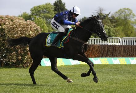 Frost shows magic touch on riding return as Corton shines