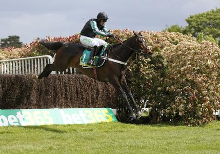 Altior sets new standard with record-breaking Celebration win