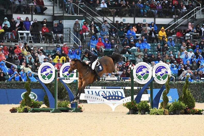 INTERNATIONAL: Victory for O'Shea in Kentucky