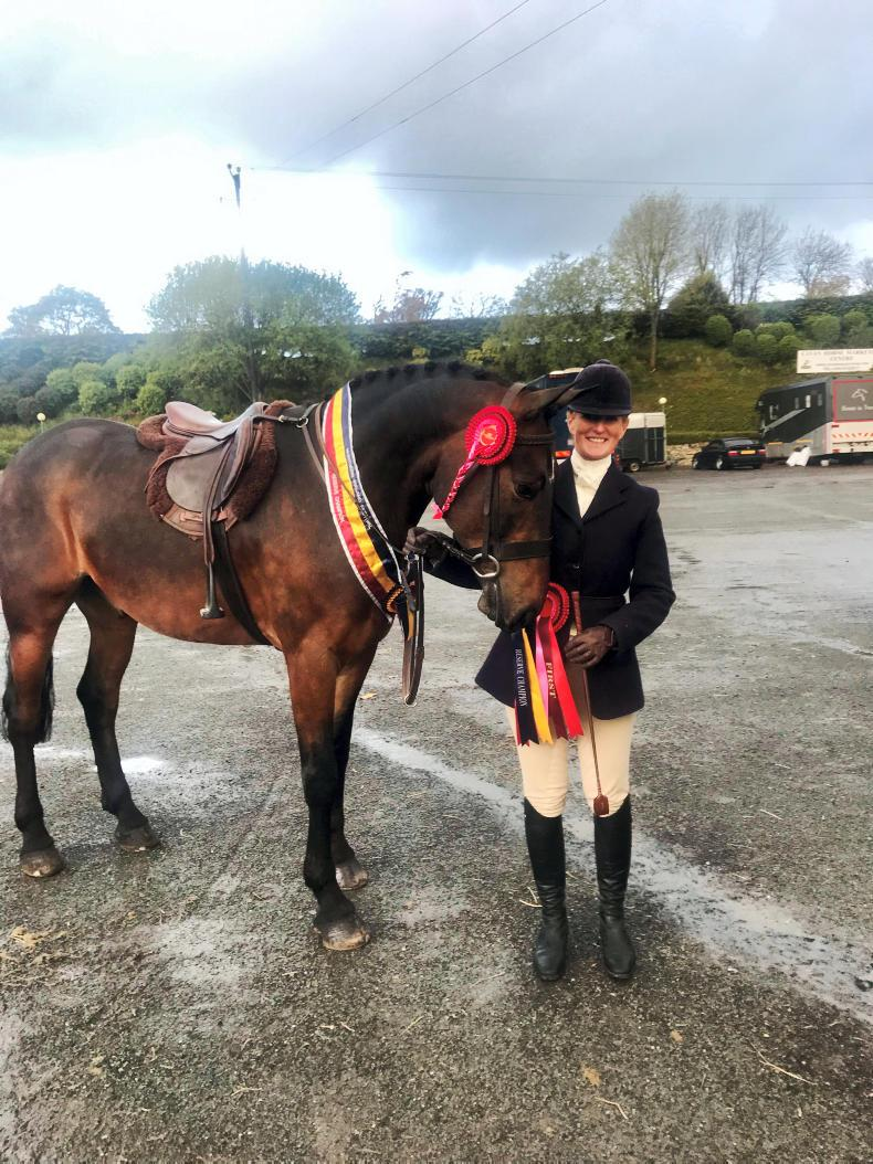 PONY TALES:  Mr P in unbeatable form