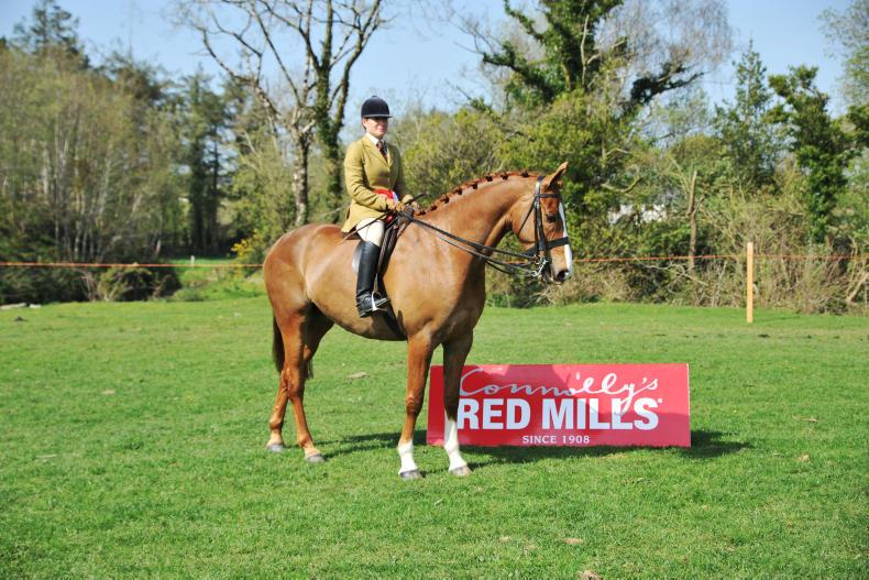 AROUND THE COUNTRY:  Ballykelly Eva off to a winning start