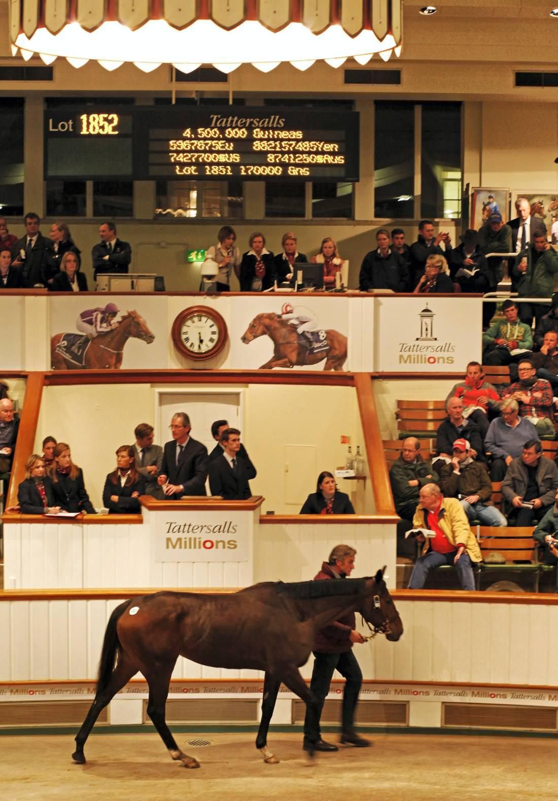 Just The Judge sets new record at 4,500,000gns