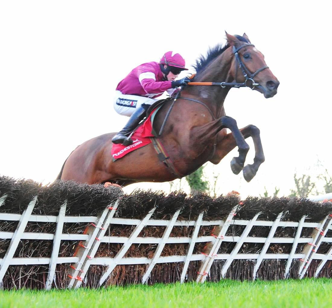 HORSES TO FOLLOW: This week's entries