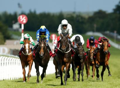 Dee Ex Bee delivers Sagaro success on Ascot return