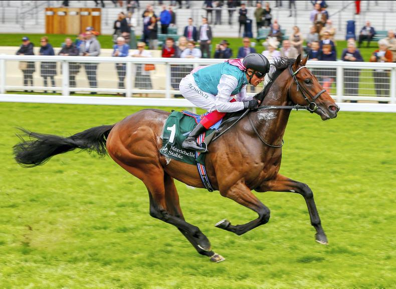 PEDIGREE ANALYSIS: Kingman showing top-sire potential