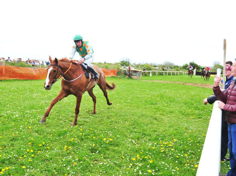 Colin Tizzard to train €360,000 point-to-point winner