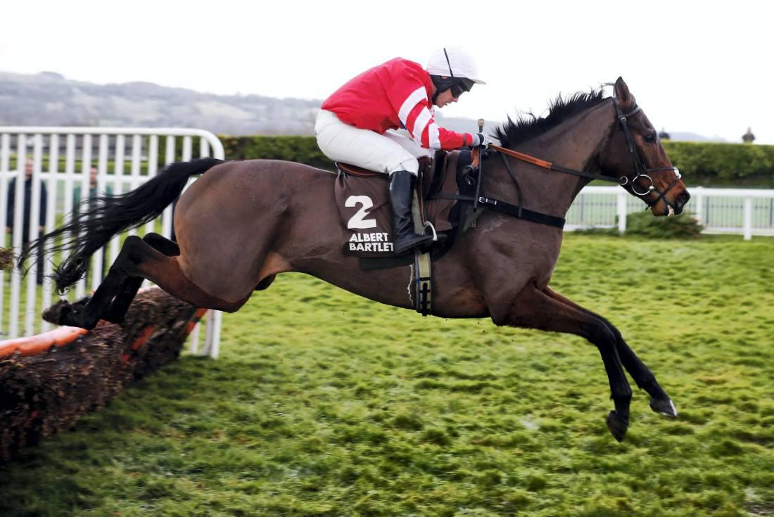 RORY DELARGY: Coneygree is Bradstock's best yet