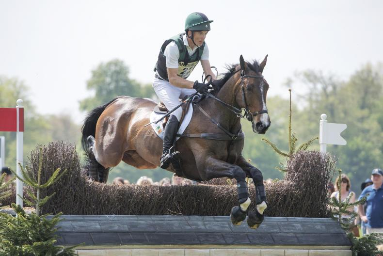 BADMINTON: McCarthy and Mr Chunky in 11th place after day one of dressage