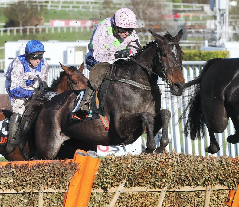 PUNCHESTOWN SATURDAY: No beating Benie