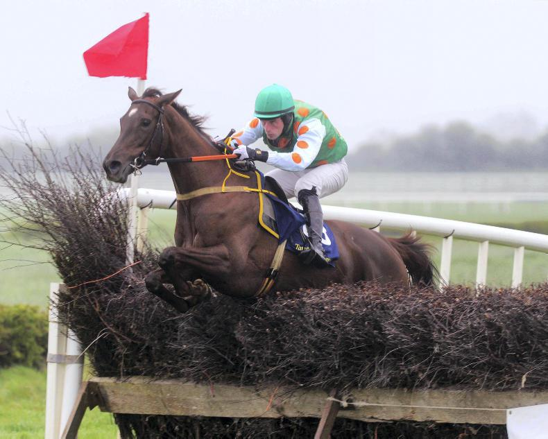 FAIRYHOUSE SUNDAY: Get In Robin gets off the mark