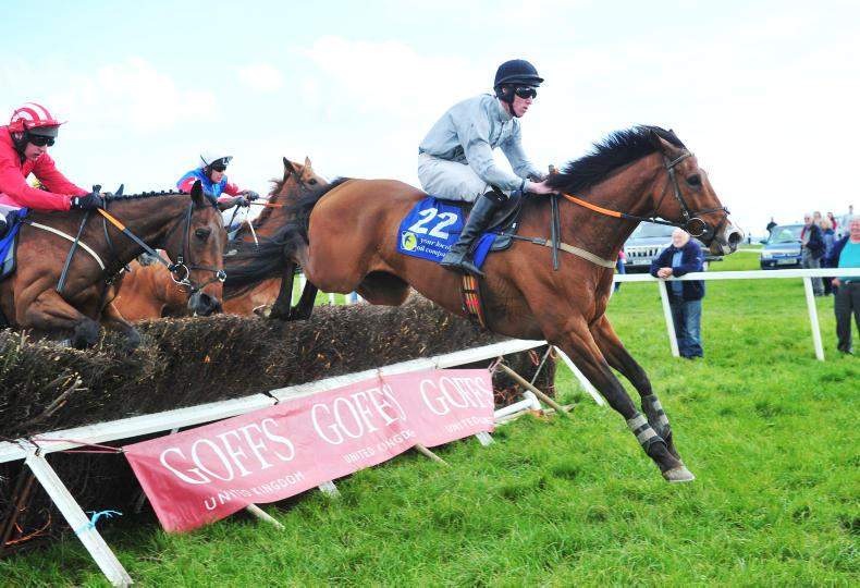 DONERAILE HARRIERS – DROMAHANE SUNDAY: Wrong Direction right on the money