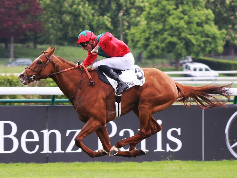 FRANCE: King George option for Ganay winner Waldgeist
