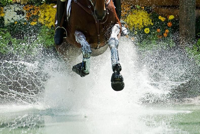 BADMINTON: Irish Sport Horses dominate leaderboard at Badminton Horse Trials